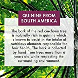 Klorane Shampoo with Quinine and B Vitamins for