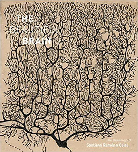 The Beautiful Brain: The Drawings of Santiago Ramón y Cajal.
