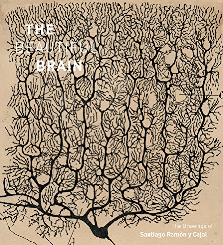 Beautiful Brain : The Drawings of Santiago Ramon y Cajal