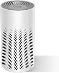EFGHONG Air Purifier with True HEPA Negative-ion & Activated Carbon,Indoor Mini Air Cleaner Filters 99% Smokes/Dust/Pet Dander/Mold During Night Light, 3-in-1 Air Purifier for Home & Office.