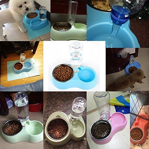 Fucaiqian Tazones Antideslizantes del Acero Inoxidable Cuenco del alimento para Gatos del Perro + Bebederos del Agua Potable con el dispensador automático ...