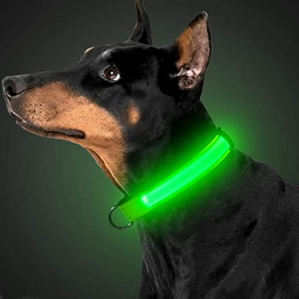 M, Red USB Rechargeable Flashing Safety Pet Collar LED Dog Collar Make Your Pet Visible Seen and Safety for Small Medium Large Dogs /… Adjustable Nylon Webbing Collar