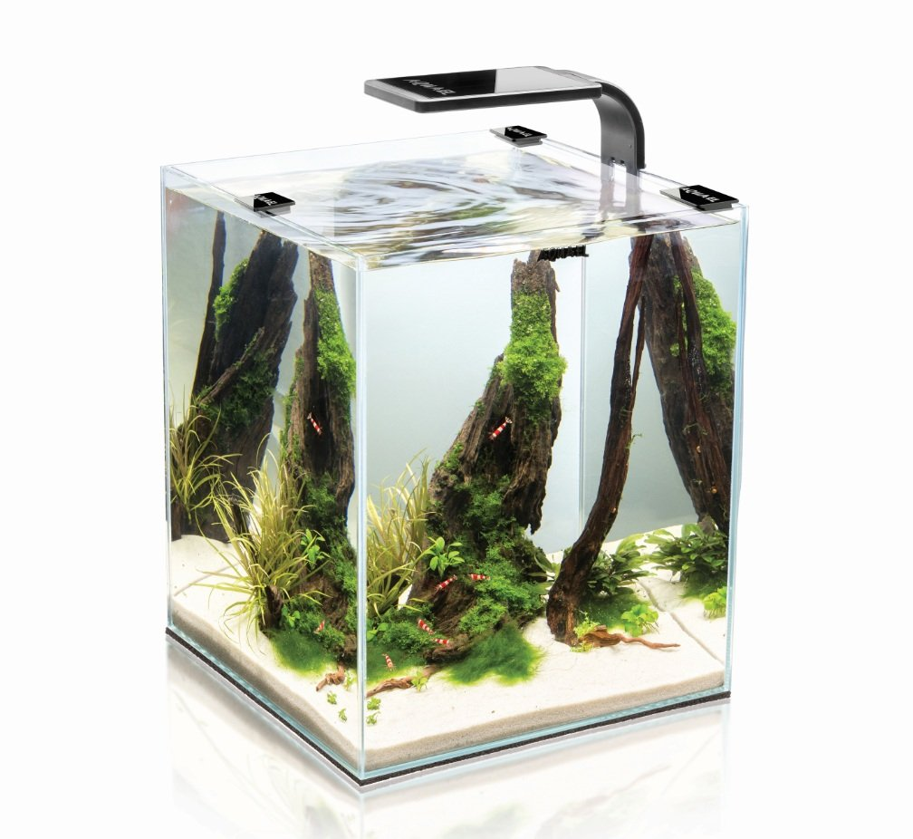 SHRIMP SET SMART 2 LED 10 BLACK AQUAEL CARIDINE PESCI PIANTE ACQUARIO COMPLETO