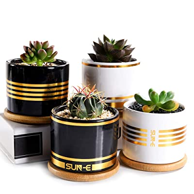 Sun-E Succulent Planter, Plants Pot, Cactus Pots, 3.15 Inch Mini White/Black Ceramic Flower Planter Pot Golden Line with Bamboo Tray with Drainage Easy Matching Gift Packaging 4 in Set (Black2, White2) : Garden & Outdoor