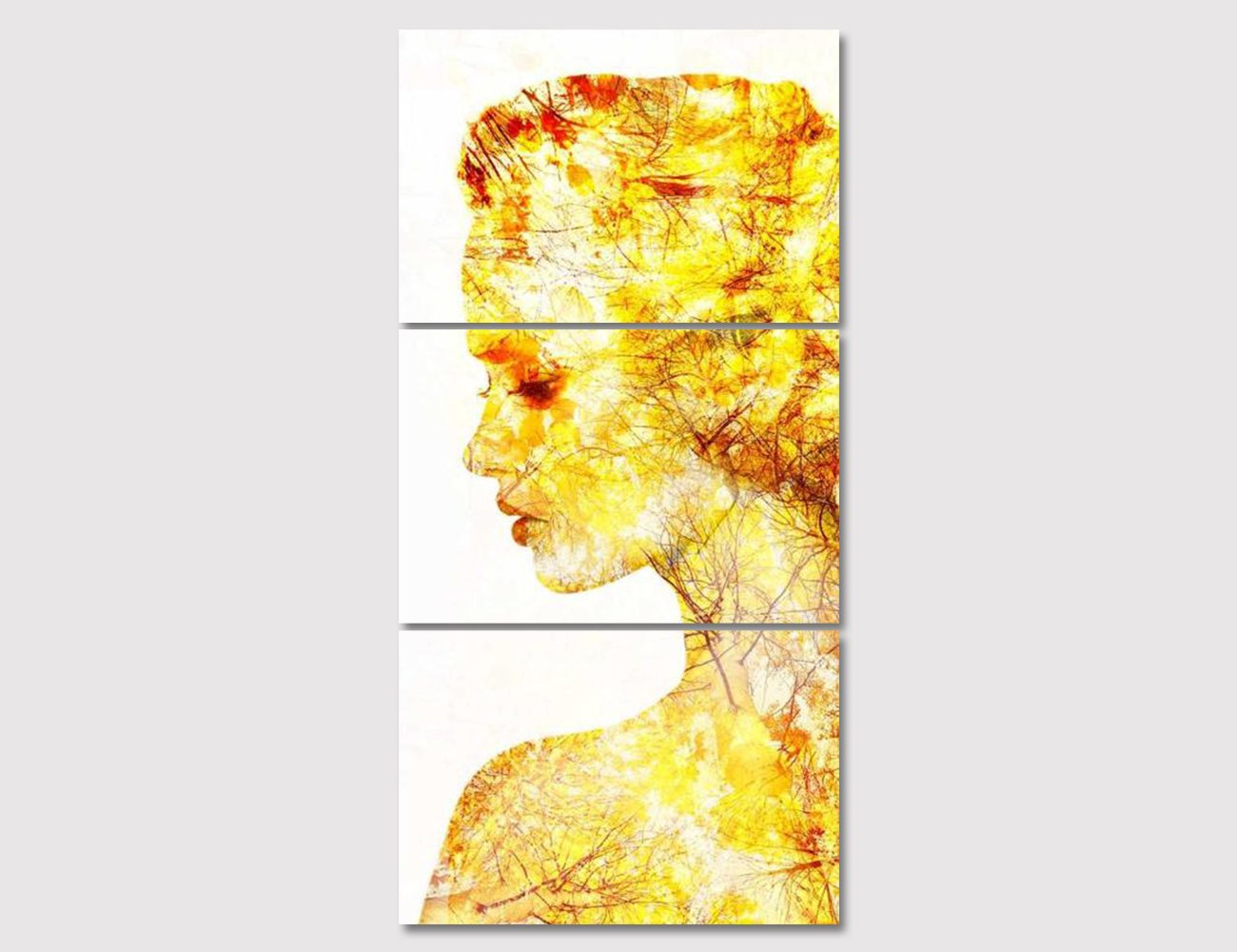 Amazon.com: Simple Style Wall Art Abstract Elegance Woman Painting ...