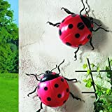 Pack Of 2 Jumbo Ladybirds - Garden, Patio, Wall, Fence Display Ornaments by sixstore