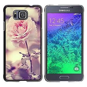 Be Good Phone Accessory // Dura Cáscara cubierta Protectora Caso Carcasa Funda de Protección para Samsung GALAXY ALPHA G850 // Light Pink Rose Garden Bright Blossom