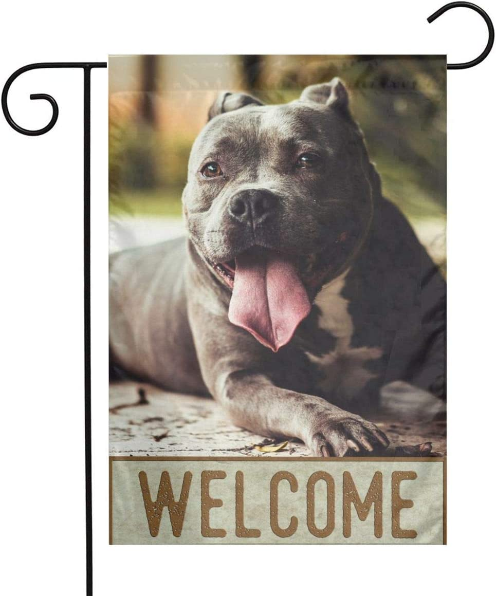 DZGlobal Pitbull Flag 12x18 American Pit Bull Garden Flag Welcome Pitbull House Flags Lovely Pet Dog Flag Double Sided Indoor & Outdoor Decorative Flags Small