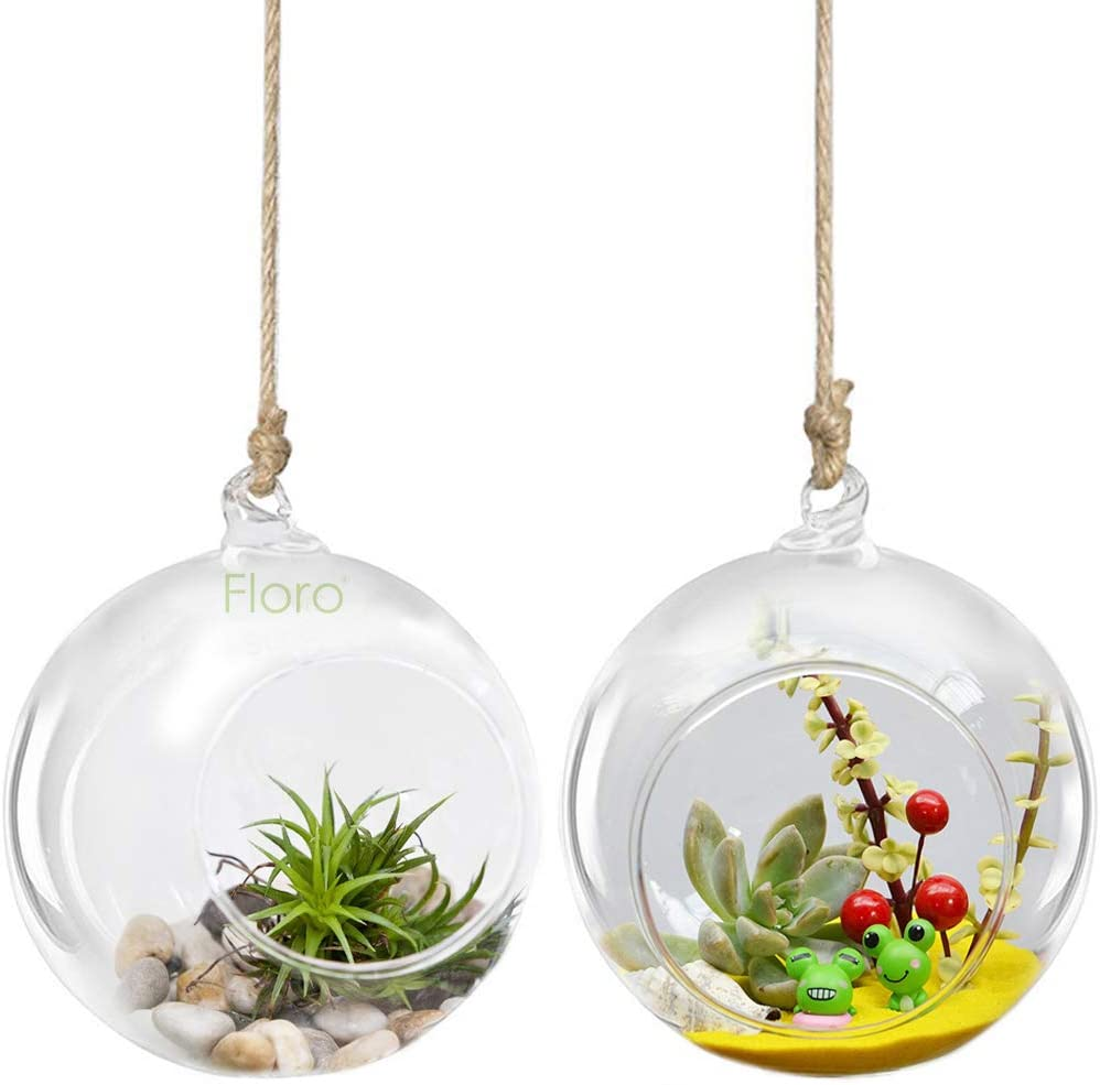 FLORO Glass Terrariums with Hanging Loop, Spherical Air Plant Orb, Handmade, Heat-Resistive Glass, Create Terrace Garden, Accessories NOT Included, 2-pcs.