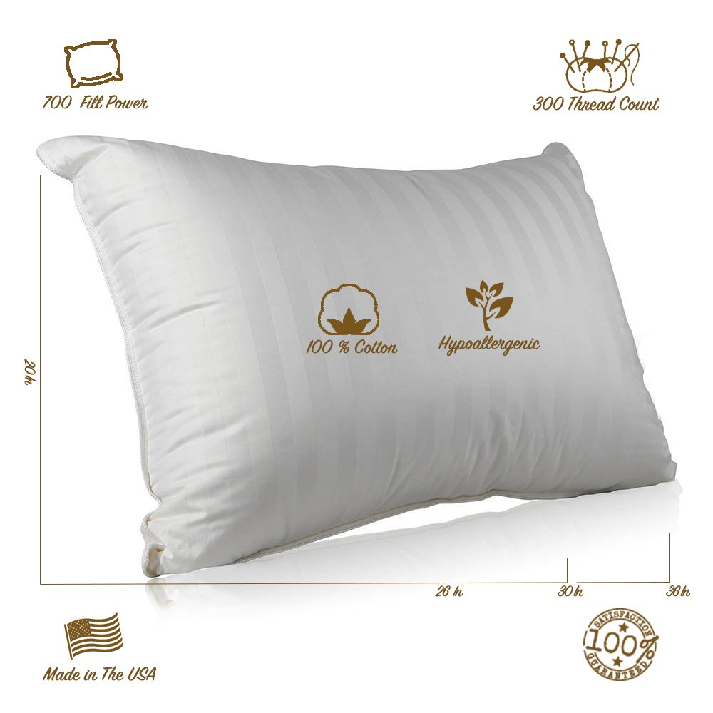 Superior 100% Down 700 Fill Power Hungarian White Goose Down Pillow (Standard) by Continental Bedding