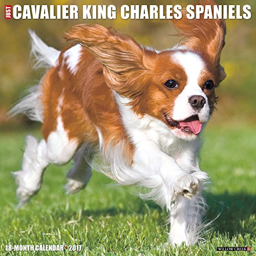 Just Cavalier King Charles Spaniels 2017 Wall Calendar (Dog Breed Calendars)