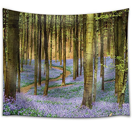 Purple Flower Field in a Forest Filled with Trees