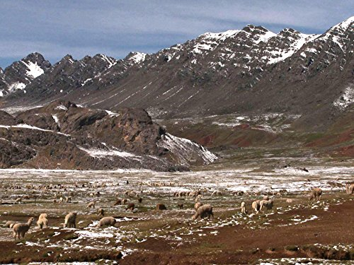 Peru: People of the Altiplano