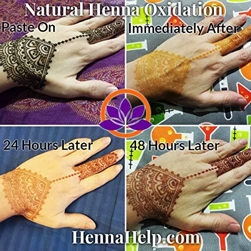 92e777a48 Amazon.com : Rajasthani Henna Hair Color Natural Organic Indian Pure No  Chemicals BAQ 100 Grams : Beauty