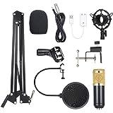 Noprm BM800 Micrófono de Condensador Iluminado Pro Audio Studio Grabación y Brocasting Micrófono Ajustable Tijera Brazo…
