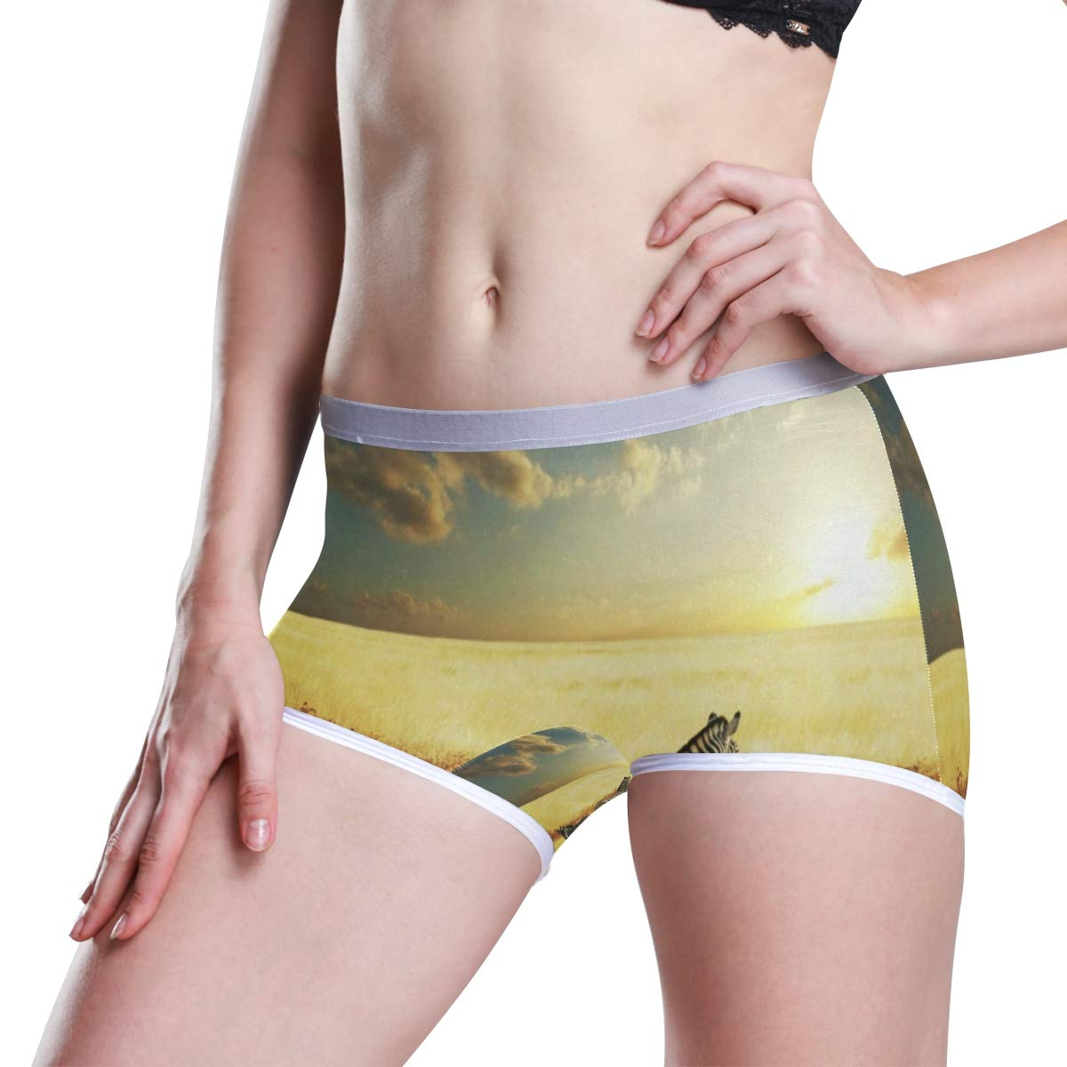 Womens Regular /& Plus Size Underwear,Zebras at Sunset Stretch Boxer Briefs Boyshort Anti-Glare Panties for Girls