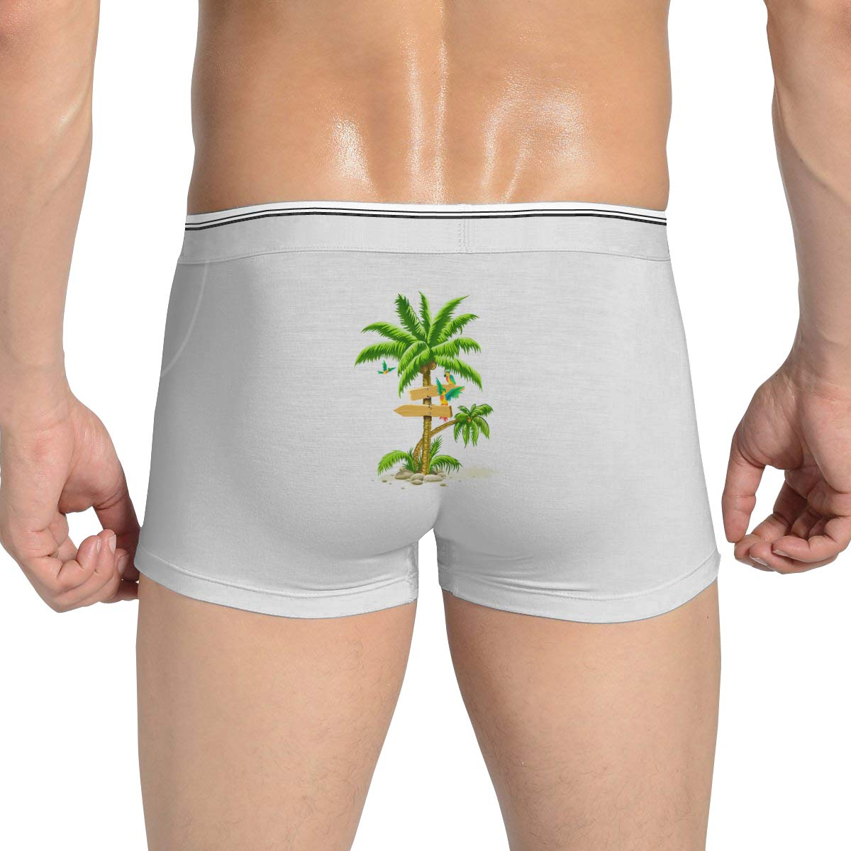 Mens Boxer Briefs Underwear Men Birds in Plam Trees Underwear Boxer Brief,M//L//XL//XXL//3X