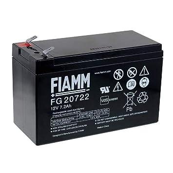 FIAMM Recambio de Batería para SAI APC Back-UPS CS 500