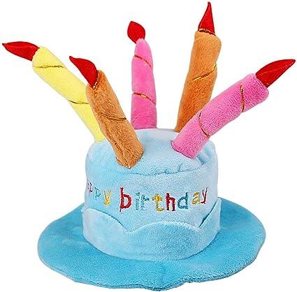 Magnificent Amazon Com Easyinsmile Cute Adorable Dog Cat Birthday Cake Hat Personalised Birthday Cards Veneteletsinfo