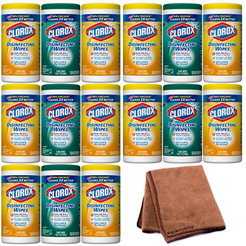 Purpose Mini Cleansing Wipes (Clorox Disinfecting Wipes Value Pack, Fresh Scent and Citrus Blend, 225 Count (Packaging May Vary), 5-Pack with Cleaning Cloth)