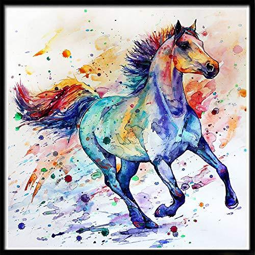 Rakkiss 5D Diamond Painting Rhinestone Painted Watercolor Horse Run Embroidery Wallpaper DIY Crystal Cross Stitch Arts Wallpaper Handmade Artwork Tools Kits 30x30cm -