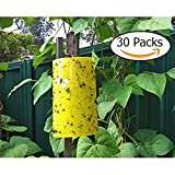 Dual-Sided Yellow Sticky Traps 8 X 6 Inch for Flying Plant Insect Like Fungus Gnats, Aphids, Whiteflies, Leafminers (30 PCS)