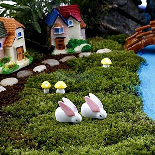 Smartchef Miniature Mini Dollhouse Landscape Garden Terrarium Figurine Bonsai Craft Decor (Miniature People For Terrariums)