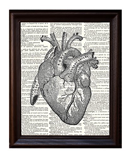 Anatomical Human Heart - Printed on Upcycled Vintage Dictionary Paper Anatomy Art Poster / Print