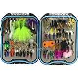 62Pcs/Box Wet And Dry Fly Fishing Flies Lure Box Kit Fly Flies Trout Assortment Butterfly Nymph Flies Woolly Bugger Flies Streamers Caddis Fly Tying Hooks