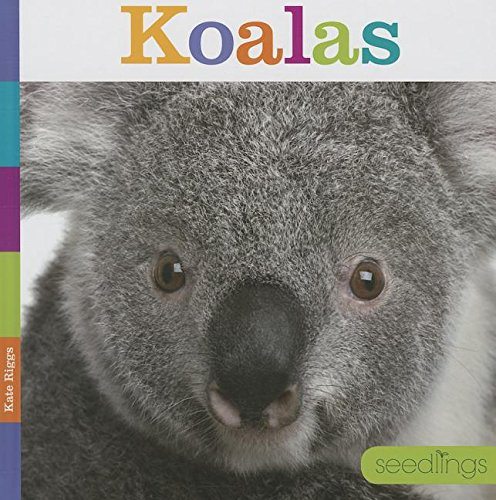Download Koalas (Seedlings) pdf epub