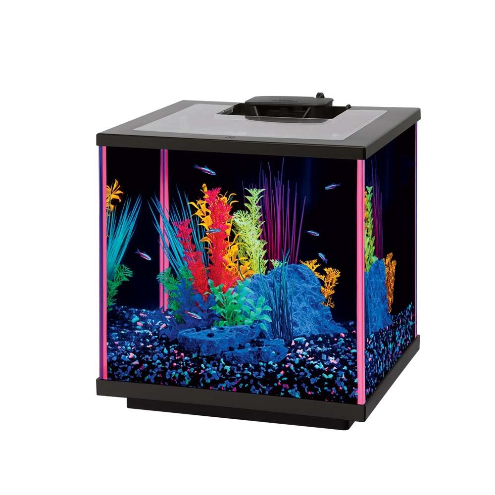 Aqueon NeoGlow LED Aquarium Kit Pink, 5.5 gallon/17'' L x 9'' W x 11'' H by Aqueon