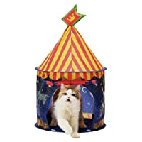 猫壱 キャット テント 夜の遊園地