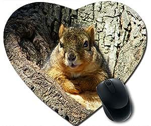 Cute Fat Squirrel Mouse Pad Desktop Mousepad Laptop Mousepads Comfortable Office Of Mouse Pad Mat Cute Gaming Mouse Pad
