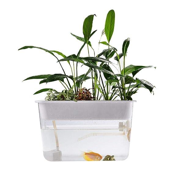Arvin87Lyly Ökologisches Aquarium, Mini Transparent Acryl Aquarium Mit Selbstreinigungs System, Innovative Kleine Bequeme Des