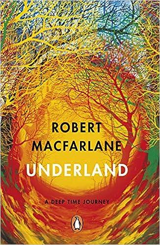 Book's Cover of Underland: A Deep Time Journey (Anglais) Broché – 28 mai 2020