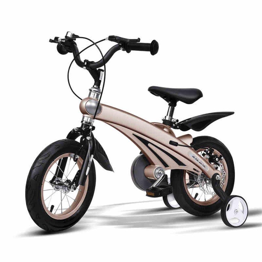 KANGR-子ども用自転車 子供の自転車3歳の男の子/女の子のベビーカー12/14/16インチマウンテンバイク ( 色 : シャンパン , サイズ さいず : 14inches ) B07BTKTVR1 14inches|シャンパン シャンパン 14inches