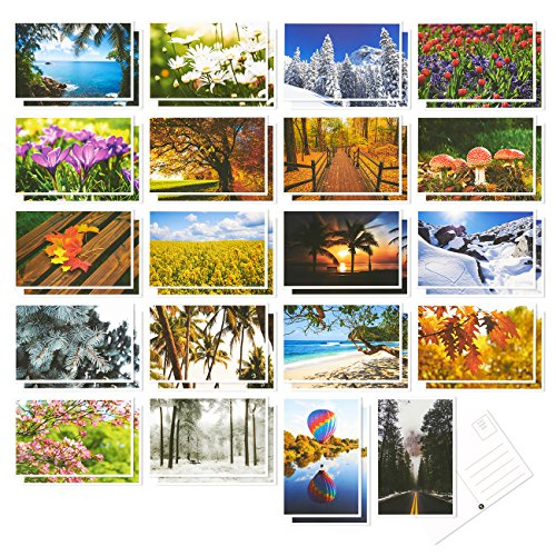 Set of 40 Four Seasons Postcards Print Variety Pack Fall Autumn Winter Summer Spring Theme Self Mailer Mailing Side Postcards 20 Different Picture Designs 40 Pack Postage Saver - 4 x 6 Inches
