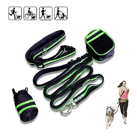 Cordón elástico doble para mascotas - absorción de golpes ...