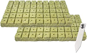 "1"" Rockwool Starter Plugs, 2 Sheet of 50 Plugs (100 Plugs Total) + 1 THCity Stake"