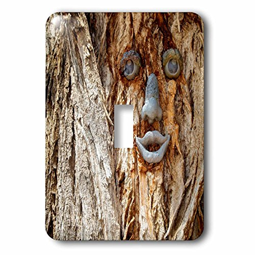 3dRose lsp_231279_1 Funny face on a tree trunk, Gallup, New Mexico, USA. Single Toggle Switch
