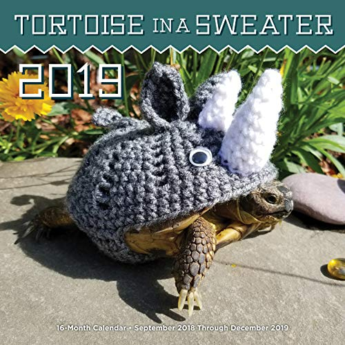 Tortoise in a Sweater 2019: 16-Month Calendar - September 2018 Through December 2019 (Best Gifts For Knitters 2019)