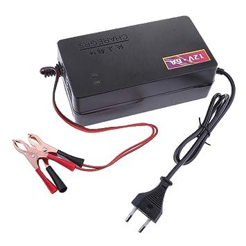 Sharplace 12V 6A Cargador de Batería de Automóvil Repuestos ...