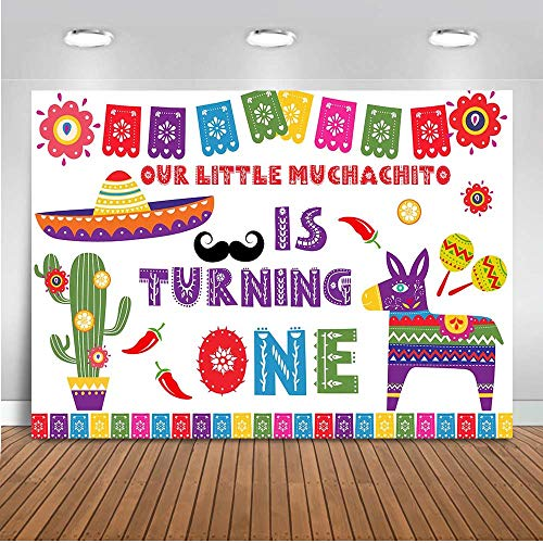 Mocsicka Mexican Theme 1st Birthday Backdrop 7x5ft Muchachito First Birthday Photo Backdrop Color Flags Banner Backgrounds Cactus Photo Backgroud Photography -