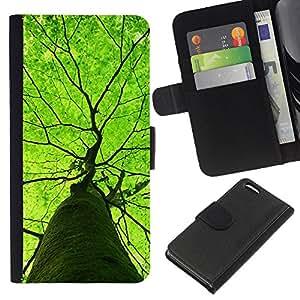 iBinBang / Flip Funda de Cuero Case Cover - Green Tree verano Naturaleza Primavera - Apple iPhone 5C
