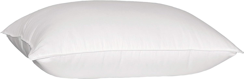 Blue Ridge Home Fashions White Microfiber Solid Goose Down Pillow, King