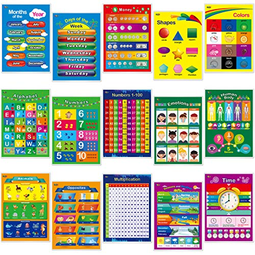 15 Laminated Educational Posters
