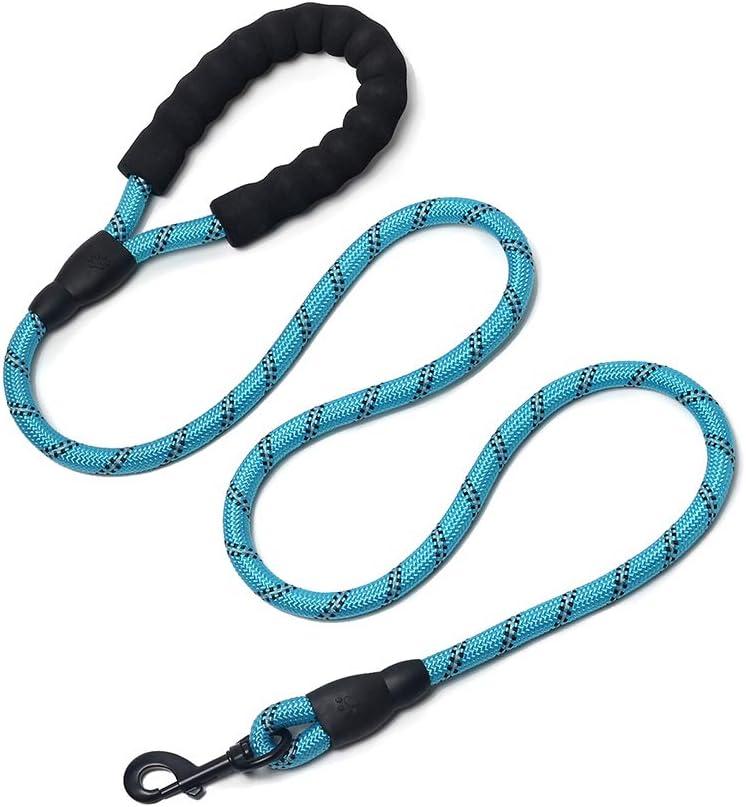 HAODIUSB88 Correa de Perro,1,5 m Correa de Fuerte de Perro Gato Resistente y Ajustable para Perro con Mango Acolchado Suave y Hilos Reflectantes (Azul)