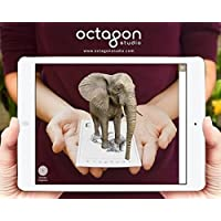 Octagon studio Animal 4 D And Food 4 D Flashcards