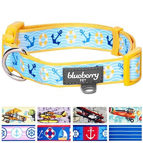 Blueberry Pet Patterns Sunshine Adjustable product image