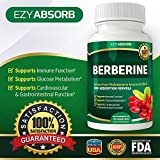 EzyAbsorb Gluten-Free Berberine 500mg, 90 Veggie